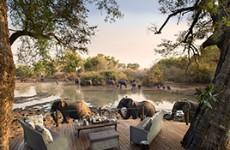 9-Day Highlights of Zimbabwe Safari