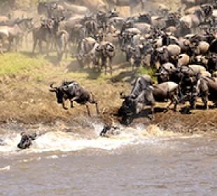 5-Day Masai Mara Safari