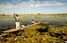 12-Day Northern Botswana & Caprivi Self-Drive