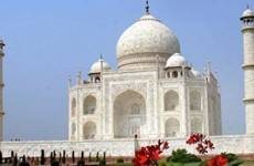 India Culture & Wildlife Tour