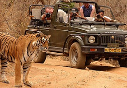 India's Golden Triangle with Ranthambore