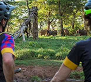 Cycle to Ngorongoro Crater