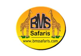 BMS Safaris