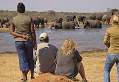 Affordable Victoria Falls & Hwange Experience