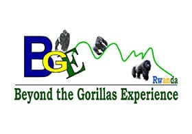 Beyond the Gorillas Experience