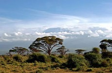 Tsavo Amboseli Safari