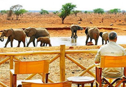 Ngutuni and Lumo Safari