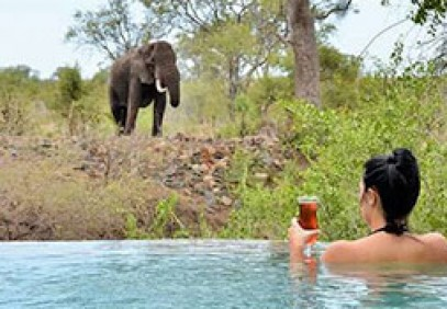 Vic Falls, Kruger & Cape Town