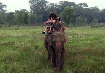 Wildlife Safari in Chitwan National Park