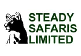 Steady Safaris