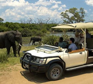 Victoria Falls Big 5 Safari