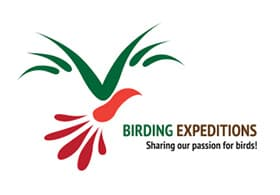 Birding Expeditions