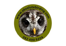 Absolute Birding and Safaris