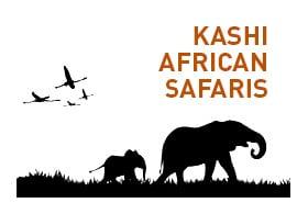 Kashi African Safaris