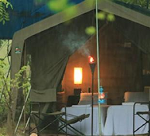 Big Game Safari Camp Wilpattu