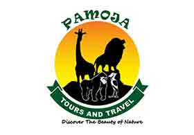 Pamoja Tours and Travel