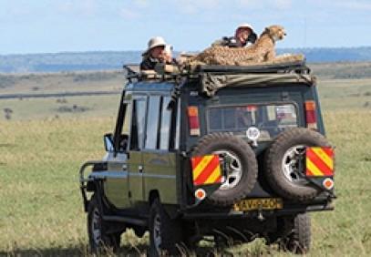 3-Day Masai Mara Wildlife Safari