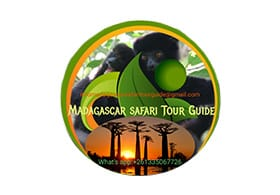 Madagascar Safari Tour Guide