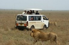 6-Day Masai Mara Nakuru National Park Experience