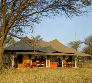 9-Day Tanzania Luxury Tented Camps Safari