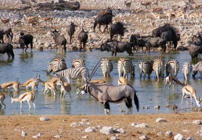 10 Day Namibian Explorer