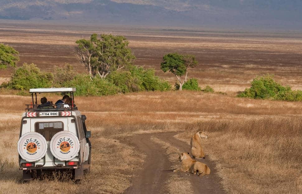 Bant Safari
