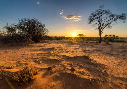 Sonnenuntergangs Stimmung In Der Kalahari