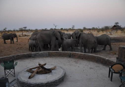 Elephant Sands 7