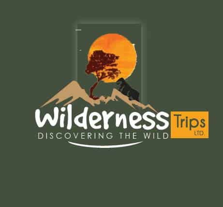 Wilderness Trips