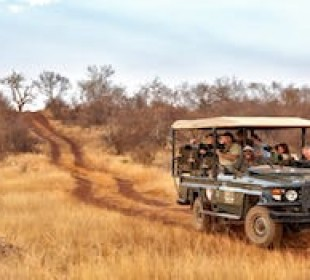 7 Day Sun City & Madikwe Family Adventure