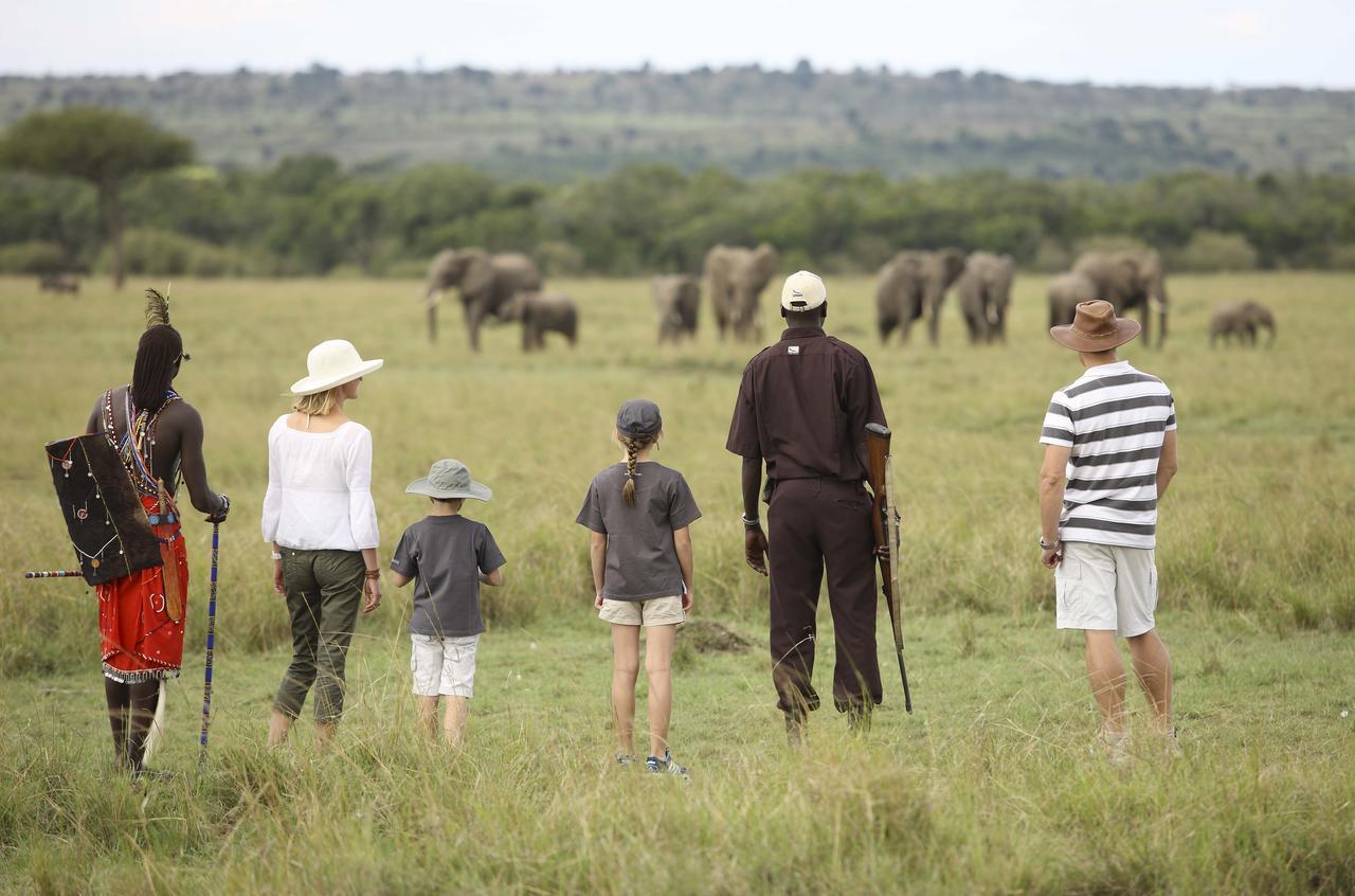 Kichwa Tembo Walking1