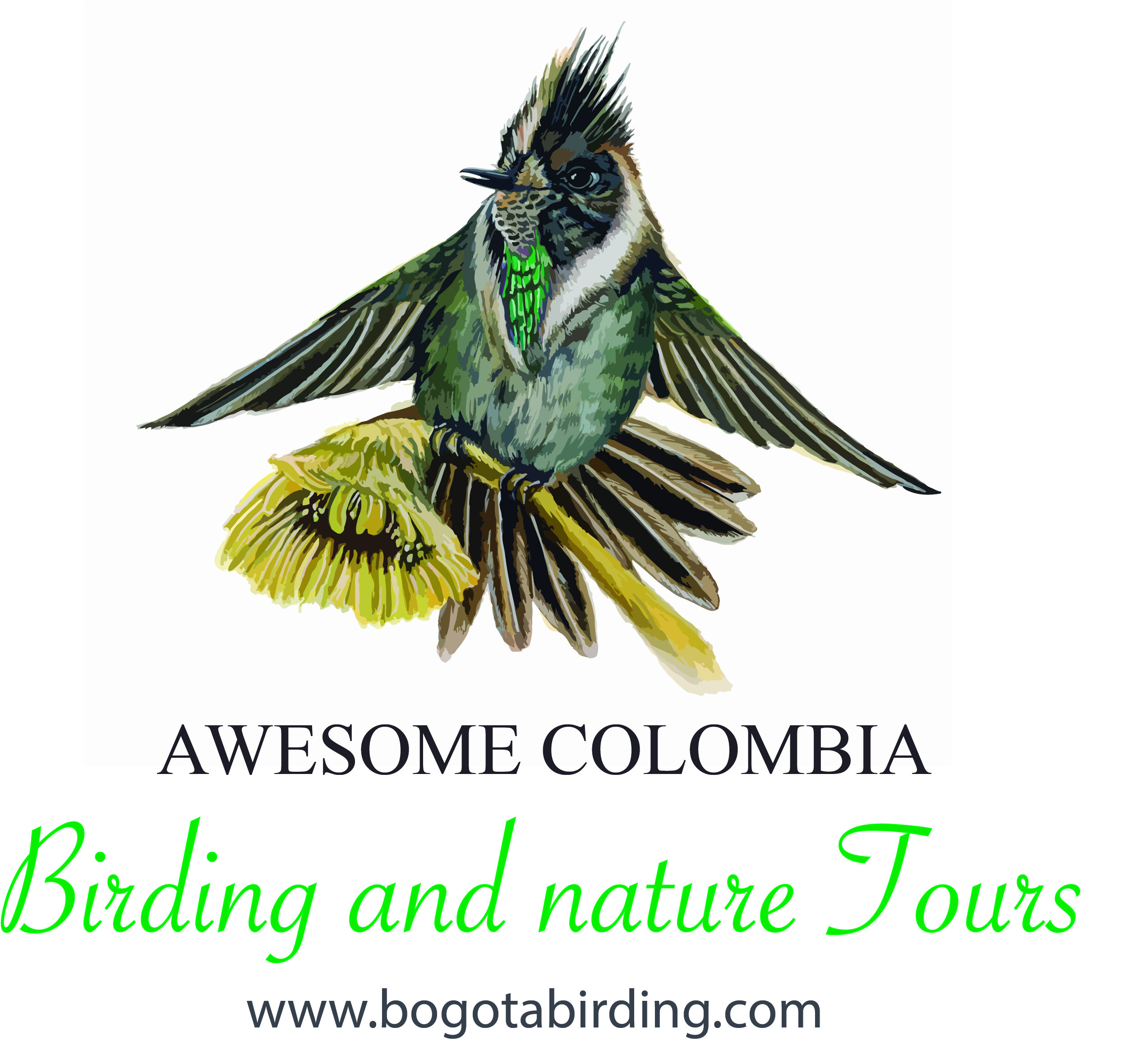 Bogota Birding & Nature Colombia Tours is an company specialized in tourism of birding, nature experiences, wildlife, herping, birdwatching, safari, butterfly, botany, orchids and nature photography.