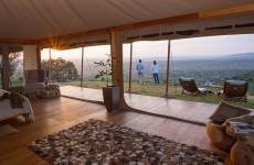 Kenya Swift Safari