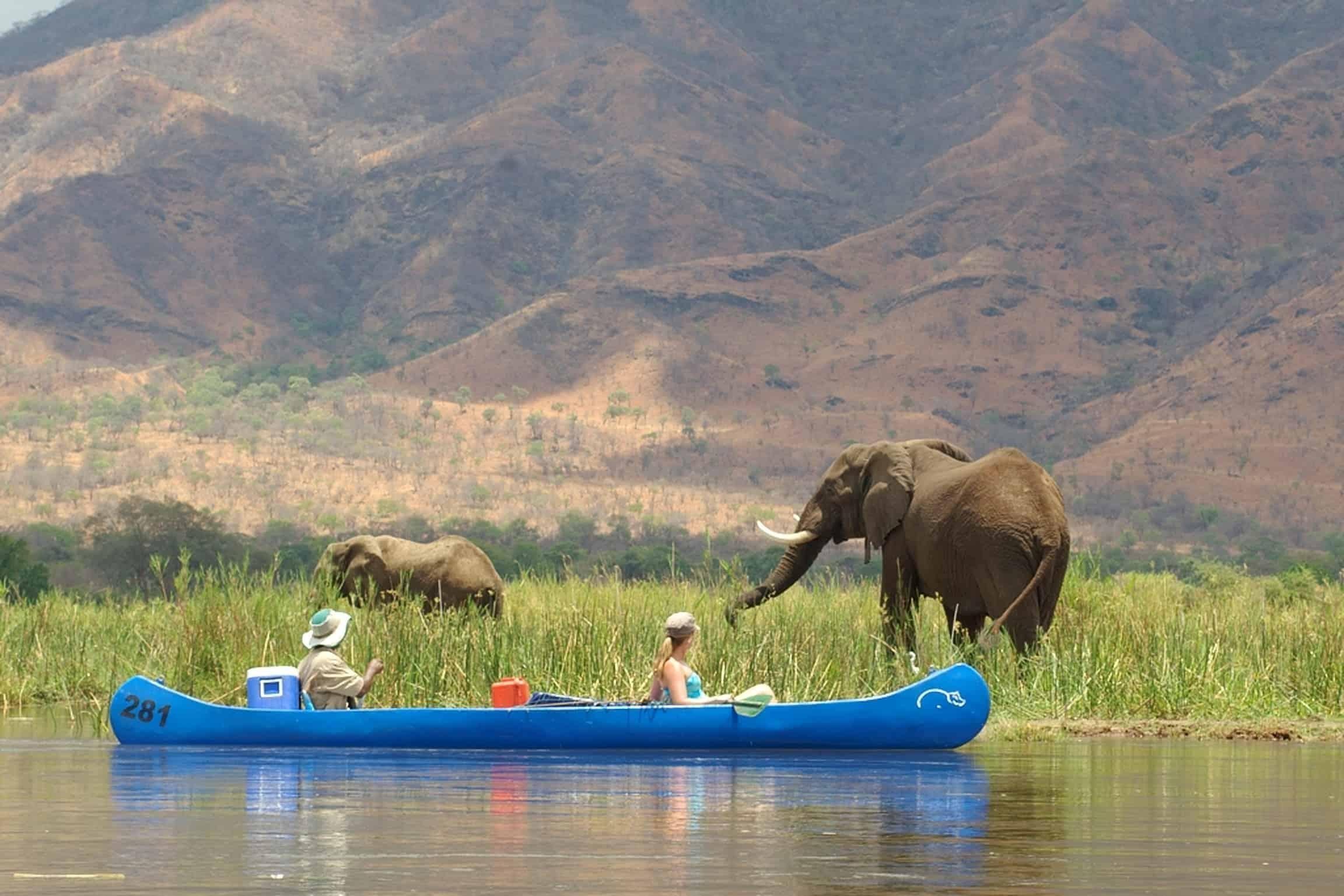 Lower Zambezi Canoe Safari Zambia By River Horse Safaris