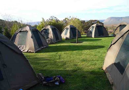 Serviced Camping Tours A4us (102)