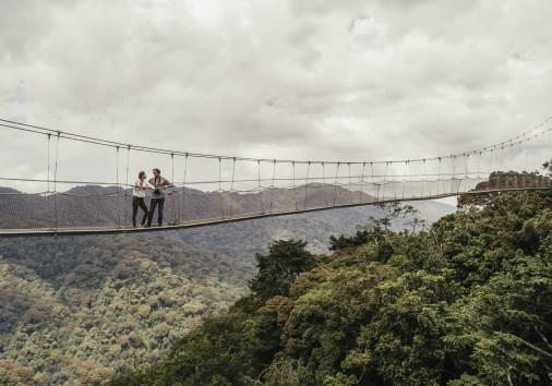 Visit Rwanda Nh Oo Lifestyle Drone Canopy Walk 0819 Master 1650x1100