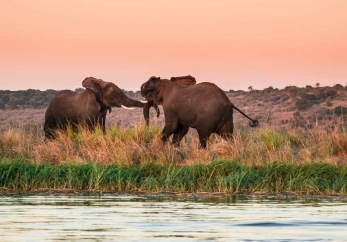 14 Days Okavango Delta, Victoria Falls and Zimbabwe