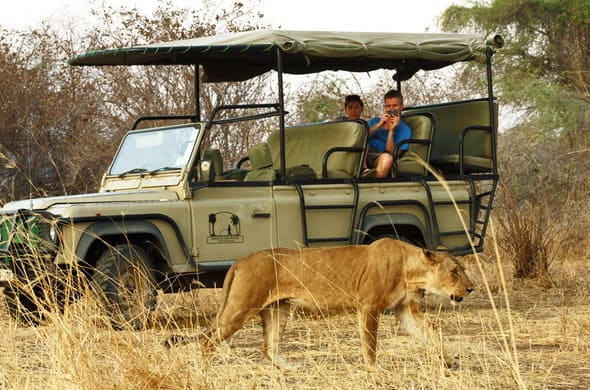 Africanaturaltours Tanzania Safari Arusha (31) Copy