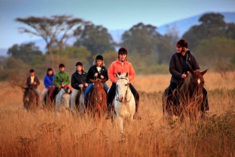 Horse Riding Provided Big Game Parks, Swaziland