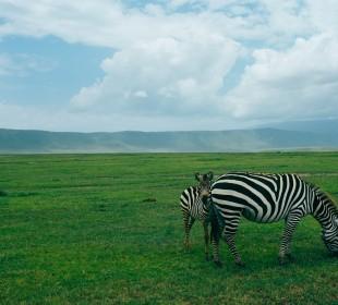 3-Day Ngorongoro Highland Trekking