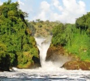 4 Days Best of Murchison Falls Safari