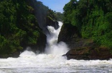Spectacular Murchison Falls Safari