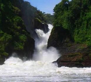 Spectacular Murchison Falls Safari