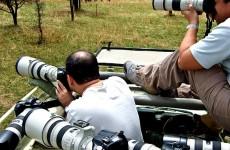 11-Days Tanzania Photographic Safari