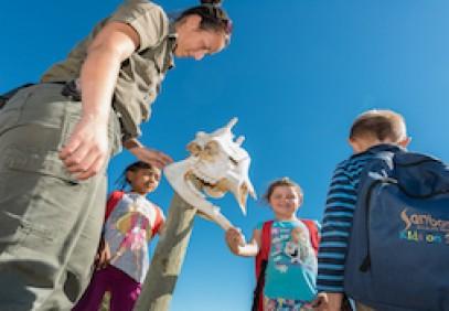 8 Day Cape Town and Sanbona Family Safari