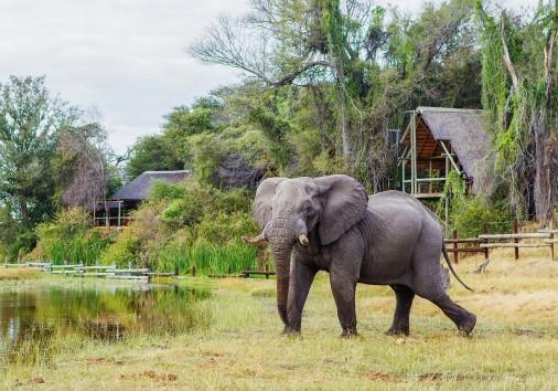 Savute Safari Lodge Elephant Lodge1