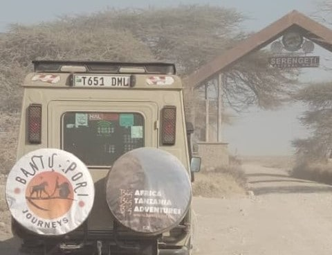 Serengeti Gate Bantu Pori