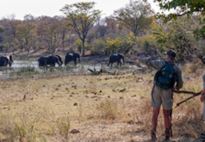 South Africa, Zimbabwe and Botswana Safari