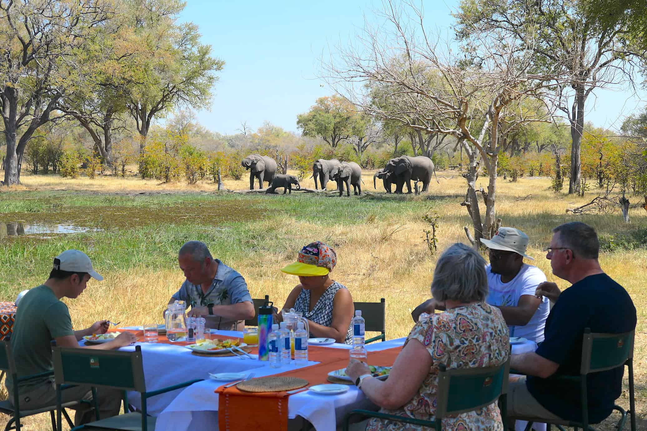 Brave Africa Bush Lunch