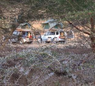 7-Day Tanzania Northern Circuit Safari